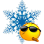 Зимняя сказка: организатор