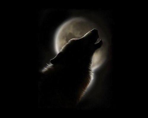 Обложка произведения 'Луна луною о луне'