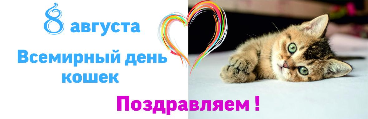 Картинки с международным днем кошек 8 августа