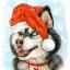 С Новым годом храброго пса!