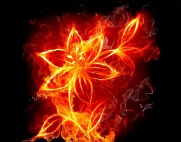 Был на свете цветок алый-алый
