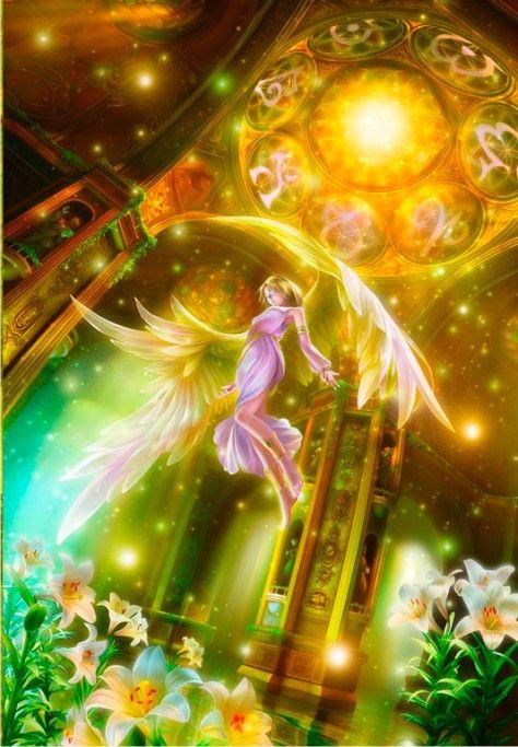 Обложка произведения 'Люди с крыльями – кто они?'