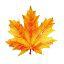 Организатору флешмоба «Золотая осень»