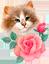 Участнику флешмоба «День кошек»