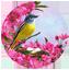 Победителю лонгмоба «Весна, цветы, любовь»