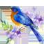 Приз симпатий лонгмоба «Весна, цветы, любовь»