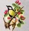 Победителю внеконкурса лонгмоба «Весна, цветы, любовь»