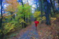 Обложка произведения 'Листья, которые побывали в другой стране'