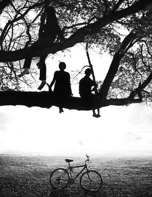 Обложка произведения 'Первая любовь, тяжелые последствия.'
