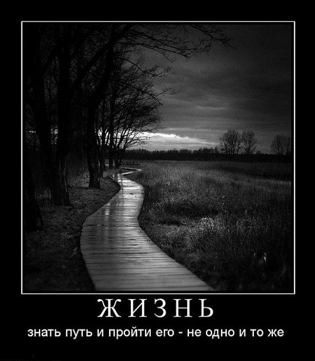 Обложка произведения 'Дорога Жизни.'