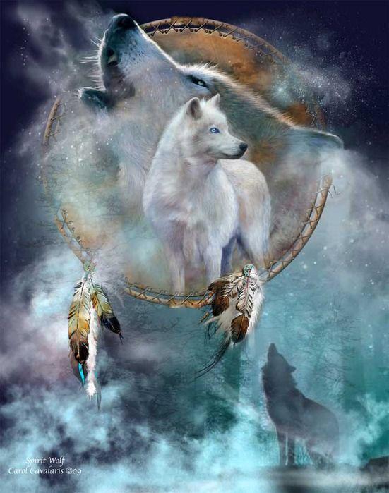 Обложка произведения 'Кости шамана'