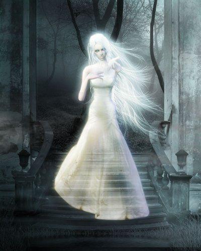 Обложка произведения 'Легенда о призраке'
