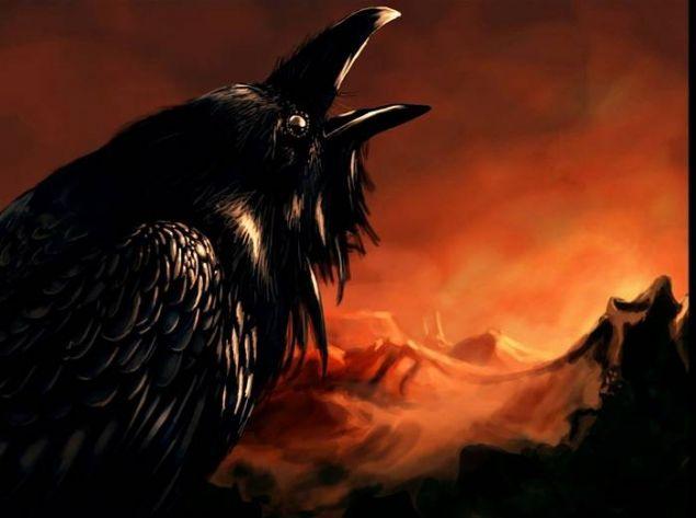 Обложка произведения 'Гордая птица'