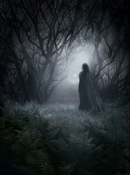 Обложка произведения 'Тёмный лес'