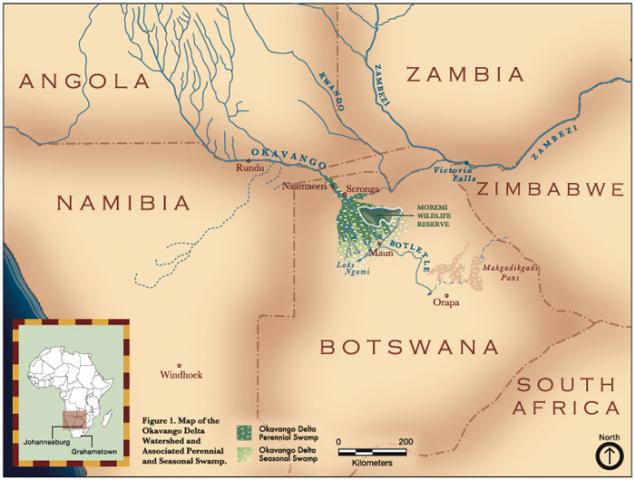 Обложка произведения 'Немного про Окаванго и другие подобные реки'