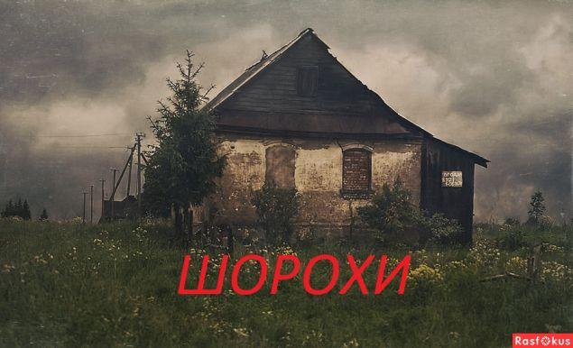 Обложка произведения 'ШОРОХИ'