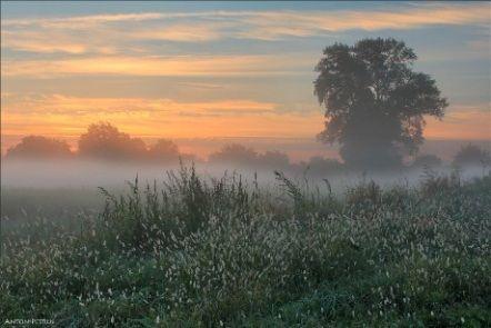 Обложка произведения 'Осень... сентябрь'