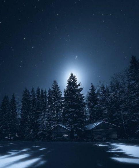 Обложка произведения 'Тихая ночь, дивная ночь'