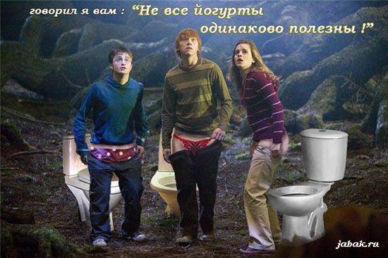 Обложка произведения 'Гарри Потный и зарытая комната'