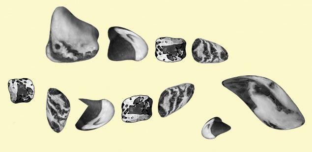 Обложка произведения 'Жили-были шнурки – Сказка для изобретательных'