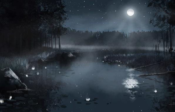 Обложка произведения 'Озеро ночи'