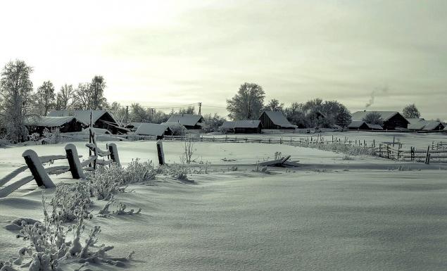 Обложка произведения 'Последний житель деревни'