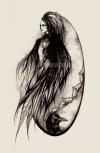 Обложка Струны Ворона