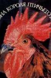 Обложка Куриный гарем.