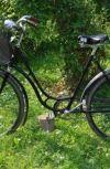 Обложка Дамский велосипед.