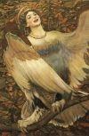 Обложка Ангел - птица стайная