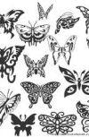 Обложка Бабочка в муке