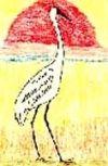 Обложка Райская птичка