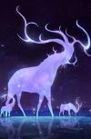 Обложка Звёзды, падающие раз в году