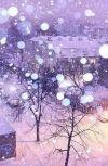 Обложка Снег