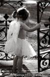 Обложка Никто не знает что у  ангелов от слез темнеют крылья