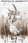 Обложка Частушечки-депресняк «Из ужасов жизни начинающего автора, пишущего в жанрах фантастика и фэнтези»