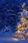 Обложка Рождественская рондель