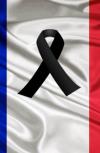 Обложка Франция умерла...