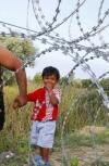 Обложка Американизм 001. Мигрант.