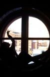 """Обложка Вечер сорок пятый. """"Вечера у круглого окна на Малой Итальянской..."""""""