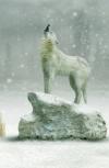 Обложка Снежные волки