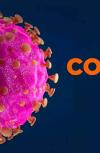 Обложка Убийство коронавирусом. Глава первая. Одинокая Рабига.
