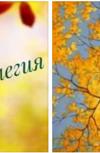 Обложка Осенняя элегия