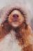"""Участник 4 - Гофер Кира / Сессия #5. Семинар ноября """"Три части мира"""". / Клуб романистов"""