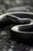Зависть-змея / reptiliua