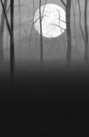 Обложка В снах волшебного леса
