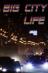 Жизнь большого города
